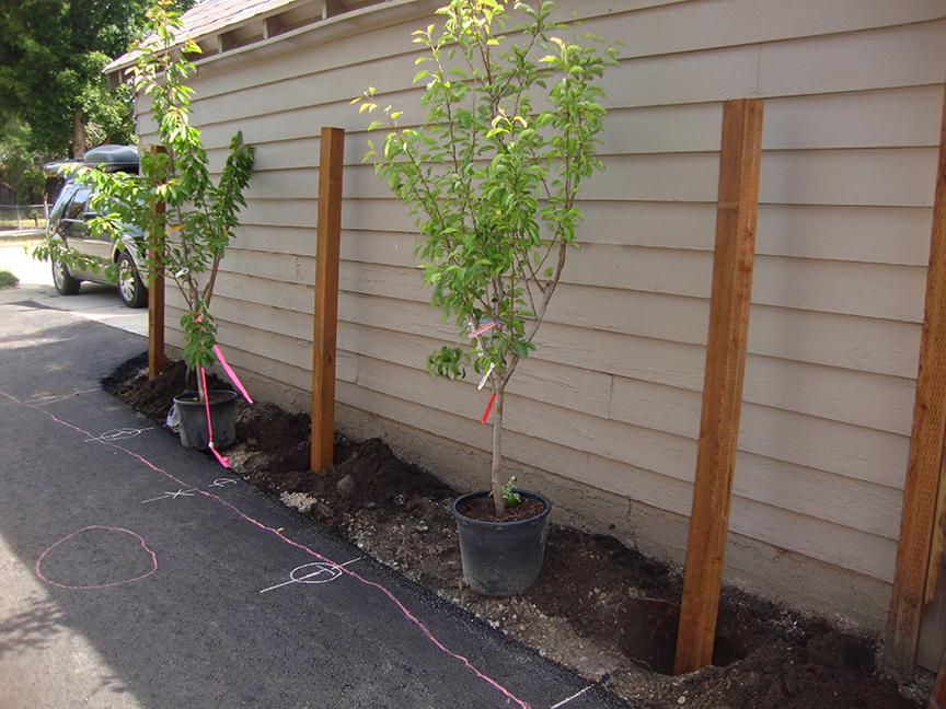 free standing garden trellis bistro onesix