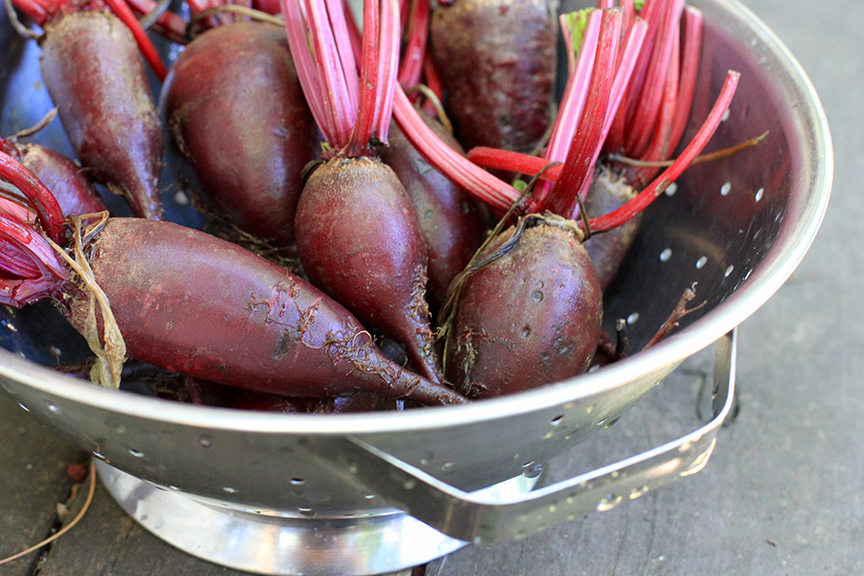 Fresh from the garden beets | Bistro OneSix