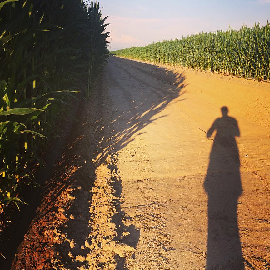 Caldwell farm sunset | Bistro OneSix