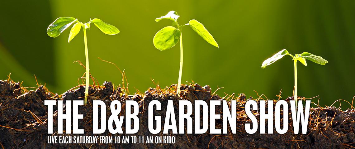 my radio debut – D&B garden show