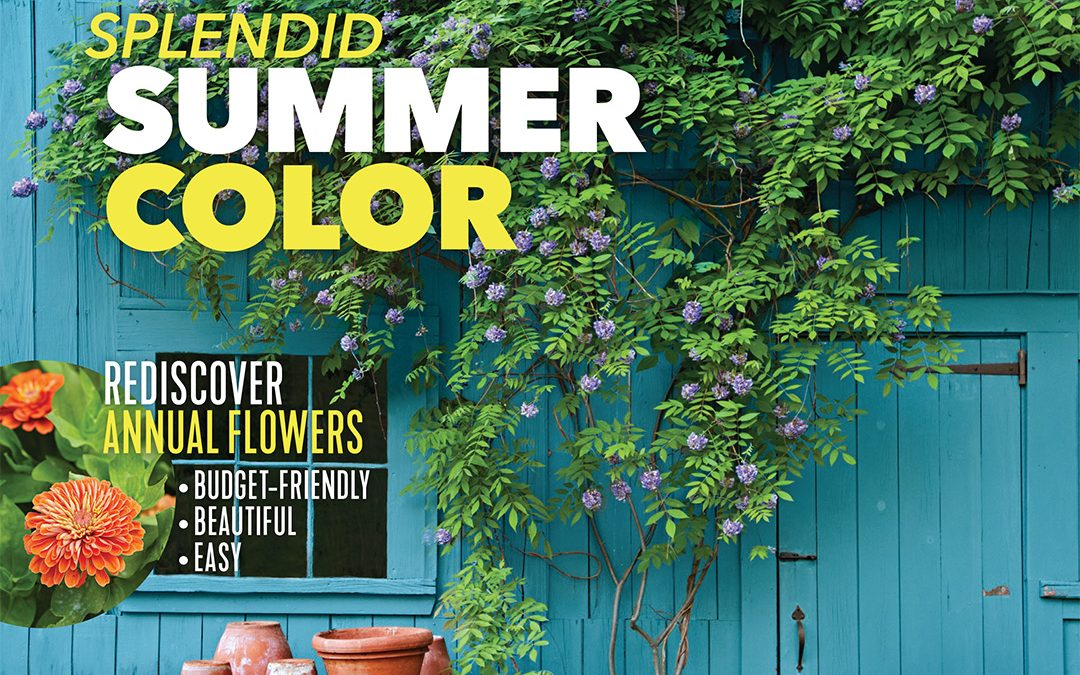 SNOW Block and Country Gardens Magazine
